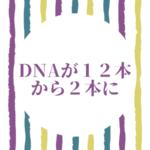 この世に生まれて来る時にDNAを12本から2本に切り替えた